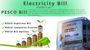 Check PESCO Bill Duplicate, Payment and Complaint Process